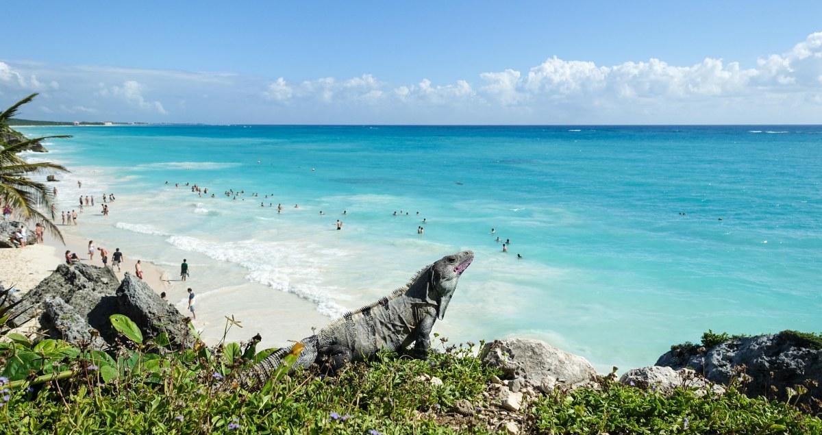 péninsule du yucatan