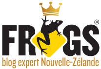 frogs-blog-expert